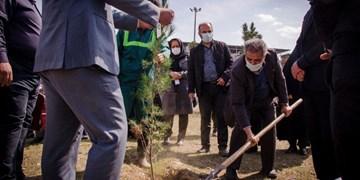 مراسم هفته ملی درختکاری در بوستان داروسازی خوارزمی برگزار شد