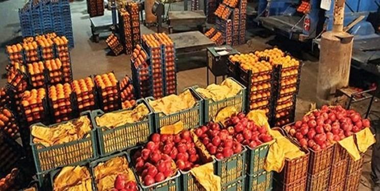 80 درصد میوه دپو شده در سردخانهها متعلق به دلالان است/30 هزار تُن میوه در آستانه فساد نتیجه طمع واسطهها