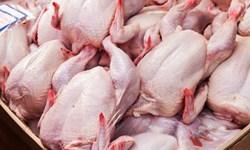 کشف 2 هزار و 500 کیلو گوشت مرغ قاچاق درخاش