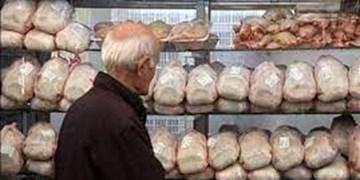 حال ناخوش مردم از پَر کشیدن قیمت مرغ