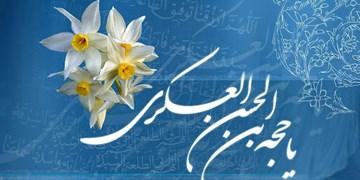 سروده محمدمهدی عبداللهی در آستانه نوروز/گل نرگس اجابت کن دعاى آخر خود را