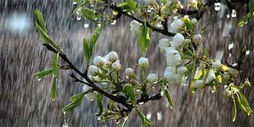 پیش بینی وزش باد و رگبار پراکنده برای آسمان البرز