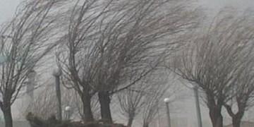 بادهای شدید و رگبار پراکنده در راه فارس