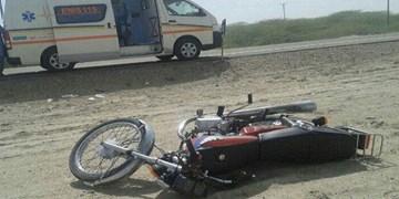 3 کشته و زخمی در برخورد موتورسیکلت با گَلّه در دشتستان