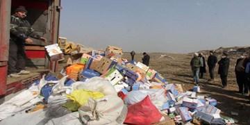93 تن کالای قاچاق و متروکه در دو استان منهدم شد