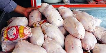 فرافکنی؛ آفت حل مشکل مرغ در استان فارس