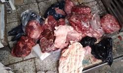 کشف 190 کیلوگرم گوشت فاسد از یک رستوران در بانه/محکومیت یک عرضهکننده مرغ غیرقابل مصرف به 6 ماه حبس در دیواندره