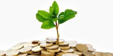 صفرتاصد بودجه ۱۴۰۰ برای محیط زیستیها