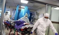 رکورد ابتلا به کرونا در بوشهر شکسته شد