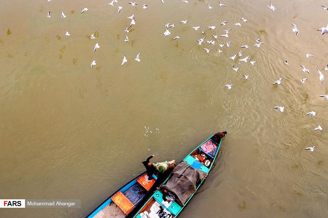 خوزستان یكی از آخرین توقفگاه های مهاجرت پرندگان از سیبری و شمال كشور است