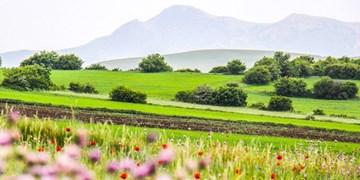 افزایش دما و وزش باد جنوبی در استان اردبیل