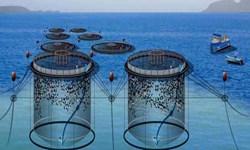 خودکفایی هرمزگان در تولید و مونتاژ قفسهای پرورش ماهی
