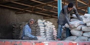 خروج سیمان از استان بوشهر ممنوع شد/ برخورد قاطع با متخلفان