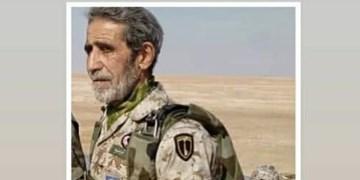 شهادت استاد و مربی فنون هوابرد نیروی زمینی سپاه حین آموزش چتربازی