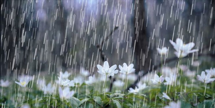 باران پراکنده فردا در اغلب شهرها/ احتمال بارش تگرگ در مناطق کوهستانی