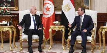 السیسی: مسئله فلسطین برای جهان عرب اصلیترین مسئله است