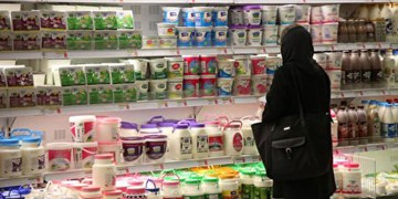 لبنیات در ماه رمضان گران نمیشود/ بیتوجهی به صنایع لبنی، وضعیت مرغ را برای لبنیات هم پیش میآورد
