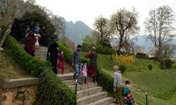 «جشنواره بهاری» در کشمیر + تصاویر