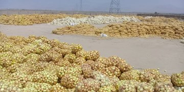 از وعدههای بیسرانجام آقای وزیر تا فراخوان جهادی/قصه «پیاز صلواتی» در جنوب کرمان چیست؟