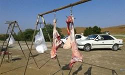 سلاخی سلامت در گوشتهای آویزان شده در خیابانهای کرمانشاه/ 1500 کیلو گوشت غیربهداشتی جمعآوری شد