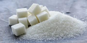 کارخانه تولید شکر تصفیه سردشت پس از ۴ سال به چرخه تولید بازگشت/ ۲۵۰ نفر مشغول کار شدند