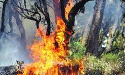 ارتفاعات کوه گُرم شهرستان خفر در آتش میسوزد