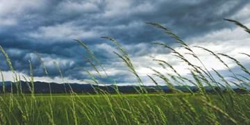 پیشبینی وزش باد همراه با گردوخاک و خسارت برای خراسان رضوی