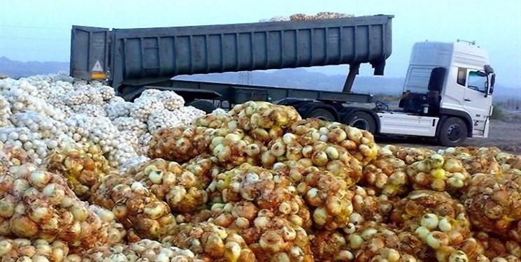 68 هزار تن پیاز کشاورزان هرمزگان و جنوب کرمان خریداری شد