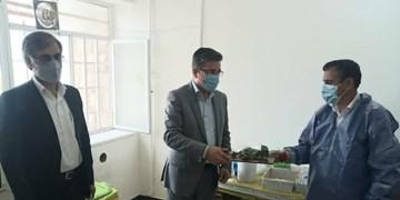 کادر علوم آزمایشگاهی در کهگیلویه تجلیل شدند