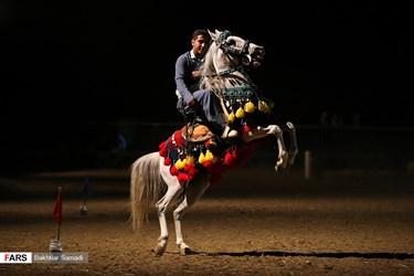 حرکات نمایشی یکی از چابکسواران حاضر در جشنواره اسب اصیل کرد در استان کردستان