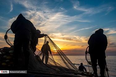 فصل جاری صید ماهیان استخوانی دریای خزر از ۱۵ مهر شروع میشود و طبق تصمیمگیری شیلات ایران ۱۵ فروردین به پایان میرسد. صید ماهیان به علت شروع فصل تخمریزی آنها متوقف میشود تا ماهیان بارور گرفتار تور صیادان نشوند و ذخایر ماهیان دریایی هم آسیب نبیند.