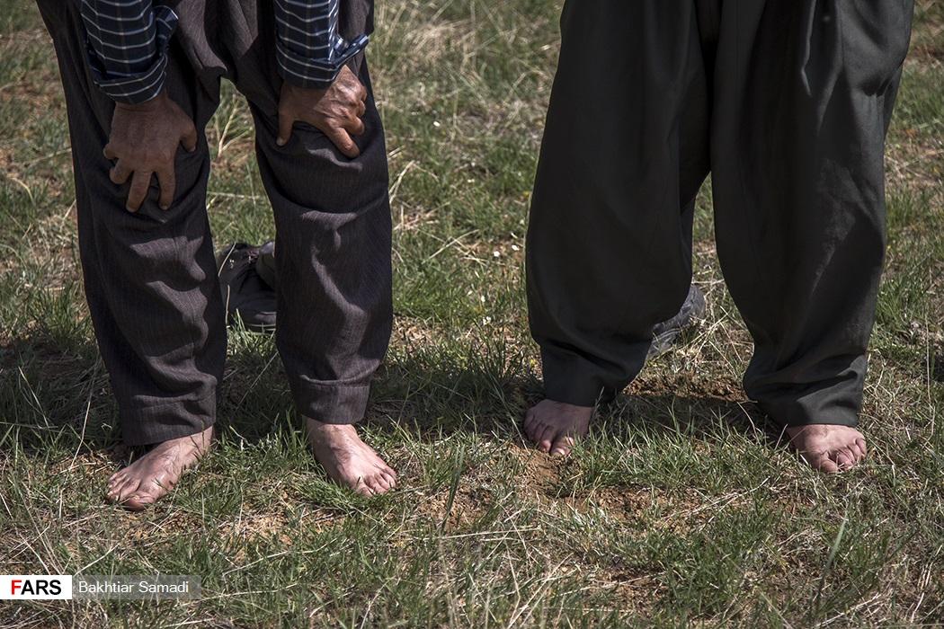 کسانی که سجاده همراه نیاورده بودند بر روی زمین چمن نماز را برپا داشتند.