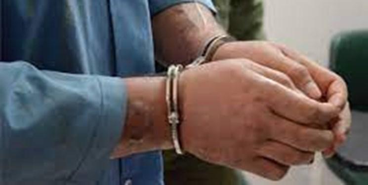دستگیری ۳۷ سارق و کشف ۱۲۰ فقره سرقت دریزد