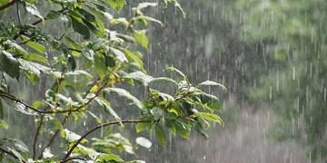 باد شدید و رگبار باران و تگرگ در مناطق مختلف/ضرورت احتیاط در کوهنوردی و چرای دام