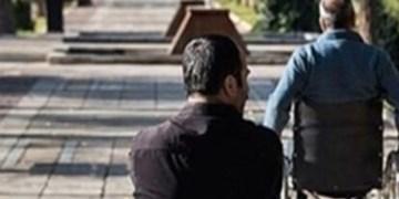 تعبیه 37 پارک ویژه معلولین در سطح شهر زنجان
