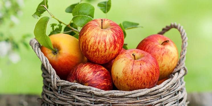 سال گذشته مردم چقدر موز خوردند؟/ 62 میلیون دلار سیب صادر شد