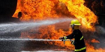 آتشسوزی در نیزارهای بوشهر مهار شد