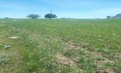 هزاران هکتار زمین کشاورزی «هلیلان» تراکتوری برای شخم زدن ندارند