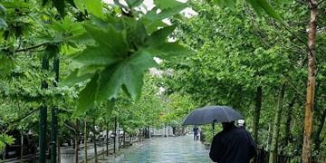 رگبار باران و رعد و برق از ۷ اردیبهشت در اغلب استانها/کاهش دما تا ۱۰ درجه در شمال شرق و خزر