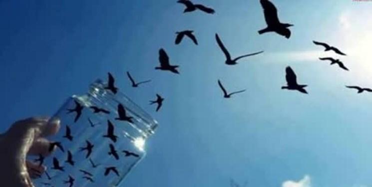 آزادی 5 زندانی غیر عمد در اسفراین
