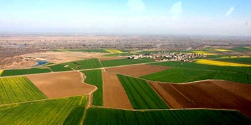 کشاورزان مالک بیش از 70 هکتار زمین می توانند کشت وصنعت تاسیس کنند