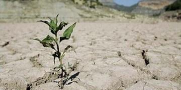 چهارمحال و بختیاری در صدر خشکترین استانها/کمبود بارشها تا پایان سال زراعی جبران نمیشود