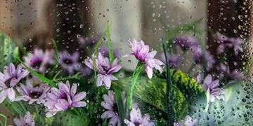 بعدازظهرهای بارانی با باد و رعدو برق ادامه دارد/بارشهای امسال ۵۶ درصد کمتر از پارسال