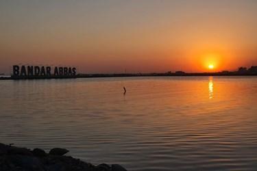 خلیج فارس  به روایت  تصویر