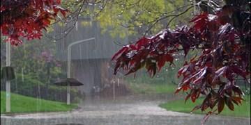 نفوذسامانه جدید بارشی به خراسان جنوبی/ بارندگیها به۴۲ میلیمتر رسید
