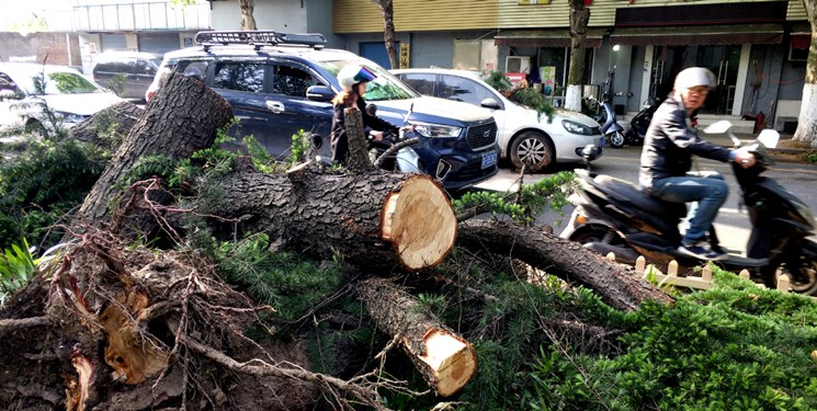 باد شدید در چین با حداقل ۱۱ کشته و ۱۰۰ زخمی+فیلم