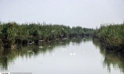 پیشبینی کاهش چند درجهای دما در خوزستان