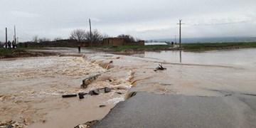 خسارت ۳۰ تا ۷۰ درصدی بارشهای شب گذشته به منازل مسکونی تربتحیدریه
