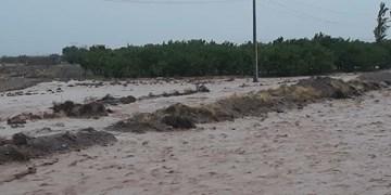 امداد رسانی هلال احمر خراسان جنوبی به ۱۲۲ حادثه دیده سیل