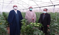 توانمندسازی روستای «اسماعیلآباد» زرند توسط دادگستری کرمان